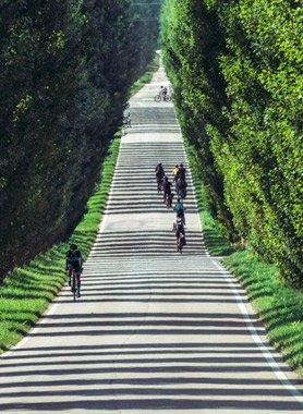 bike-tour-experience